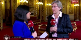 Sénat 360 - F. Hollande à Florange :