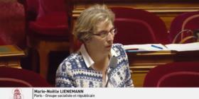 Fin des débats au Sénat sur les ordonnances SNCF - jeudi 31 mai 2018